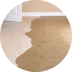 water damage cleaning ct