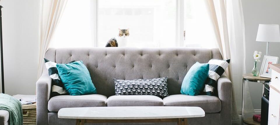 A grey couch in an otherwise unremarkable living room
